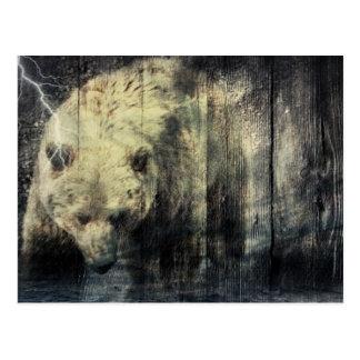 Primitive Western Woodgrain Woodland Grizzly Bear Postcard