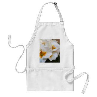 primrose in the garden standard apron