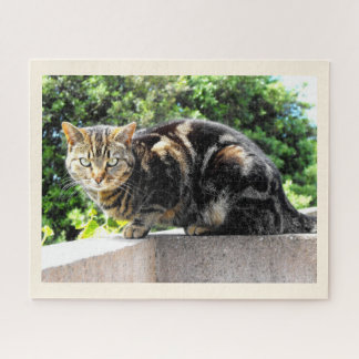 Primrose, the tabby cat jigsaw puzzle