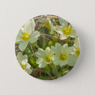 primroses in the meadow in spring 2 inch round button