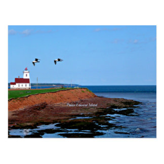 Prince Edward Island Lighthouse Postcard