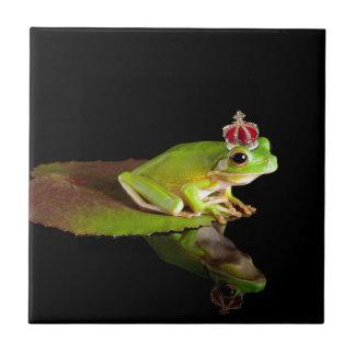 Prince frog ceramic tiles