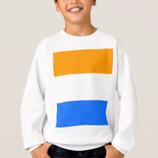 Prince's Flag Sweatshirt