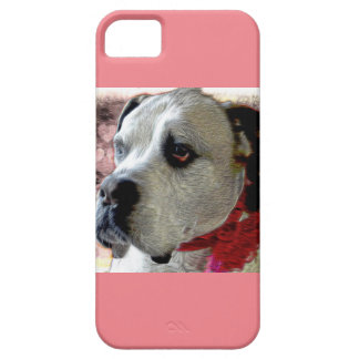 Princess Zohey at the Fair iPhone 5 Cover