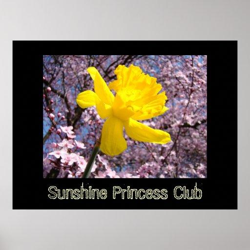 Princesse Club de soleil d'art de la pièce de PETI Poster