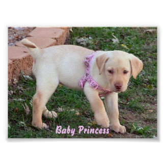 Princesse de bébé poster