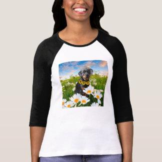 Princesse de rottweiler tshirt