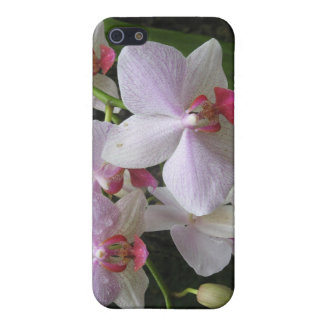 Princeville Orchid iPhone 5/5S Cover