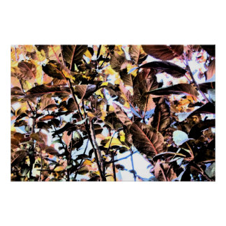 Print - Dark & BrIght Fall Foliage