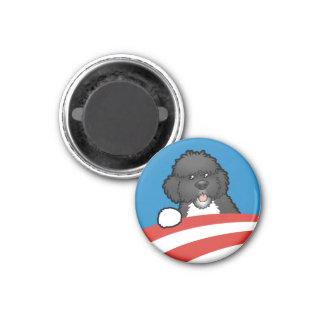 Pro First Dog Bo Obama Magnet