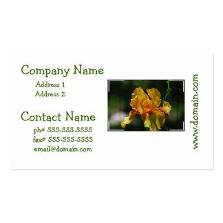 Produit de personnaliser cartes de visite professionnelles