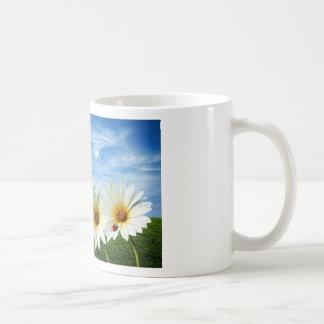 Produits de lever de soleil de fleur beaux