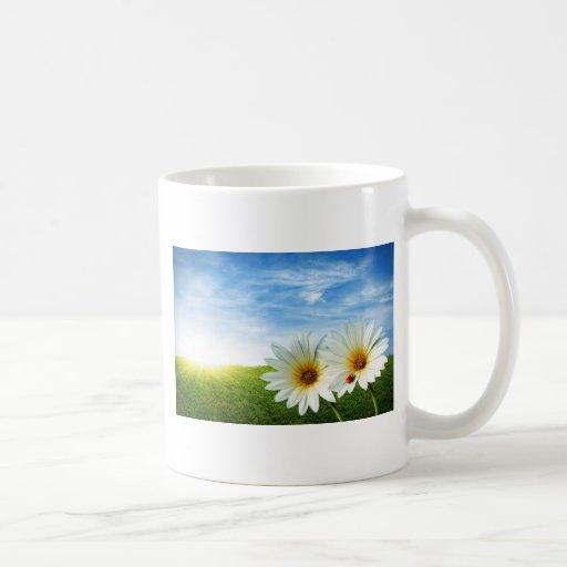 Produits de lever de soleil de fleur beaux tasse à café
