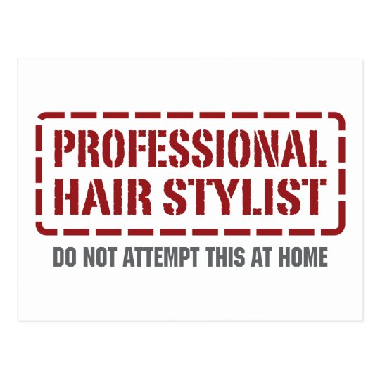 Professional Hair Stylist Postcard