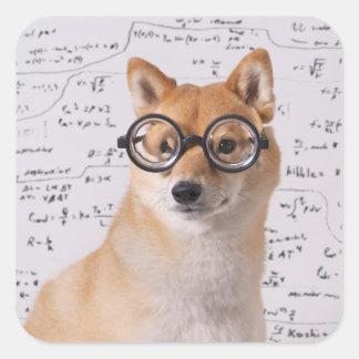 Professor Barkley Square Sticker (Glossy)