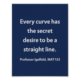 Professor Igelfeld, MAT133 Poster