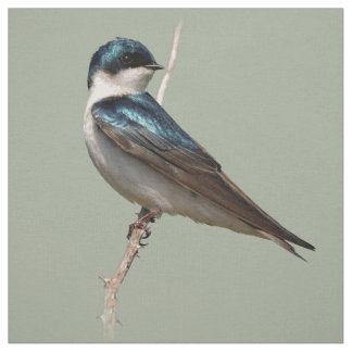 Profile of a Male Tree Swallow Fabric