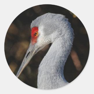 Profile of a Sandhill Crane Classic Round Sticker