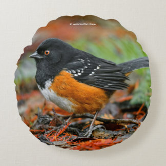 Profile of a Spotted Towhee Round Pillow