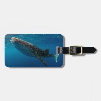 Profile of a whale shark, Indonesia Luggage Tag