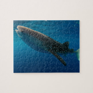 Profile of a whale shark, Indonesia Puzzles