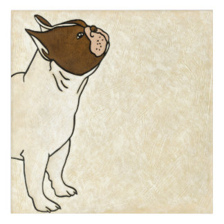 Profile of French Bulldog Looking Up Acrylic Wall Art