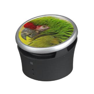 Profile of macaw at Santa Barbara Zoo Speaker