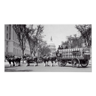PROHIBITION - CLYDESDALES in WASHINGTON Poster