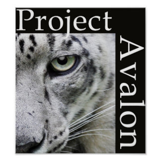 Project Avalon Poster (Dark)