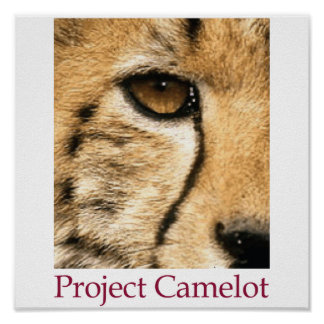 Project Camelot Poster