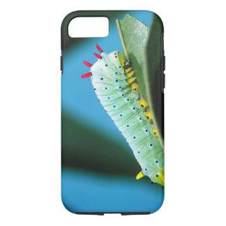Prometheus Moth Caterpillar, Callosamia iPhone 7 Case