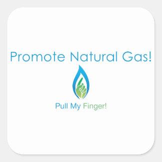 Promote Natural Gas Square Sticker