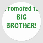 Promoted to Big Brother Sticker