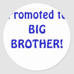 Promoted to Big Brother Stickers