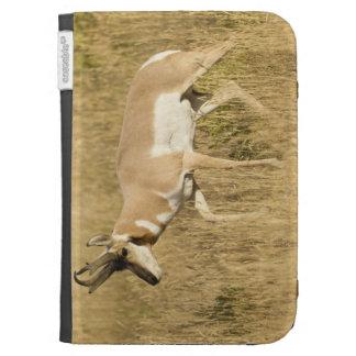 Pronghorn, Antilocapra americana, in a field Case For Kindle