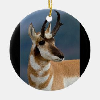 Pronghorn Portrait Ceramic Ornament