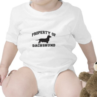 Property of Dachshund Shirts