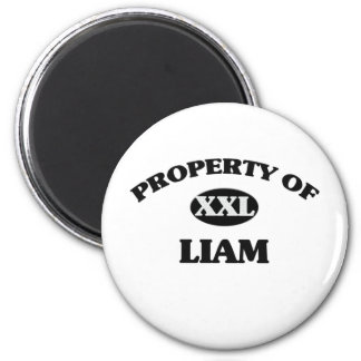 Property of LIAM Magnet