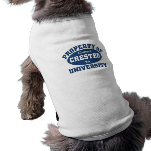 Property of xxl Chinese Crested University Pet Clothes