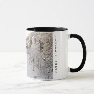 Prospect Gorge in Winter Mug