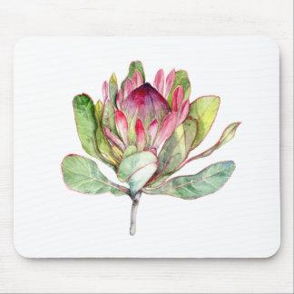 Protea Flower Mouse Pad