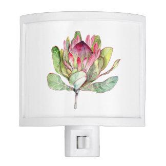 Protea Flower Nite Lites
