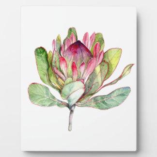 Protea Flower Plaque