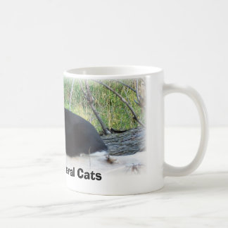 Protect Feral Cats Coffee Mug
