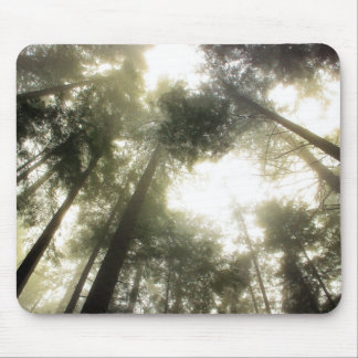 Protect Our Forests Mouse Pad