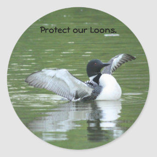 Protect our Loon Stickers