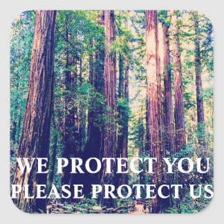 Protect The Forest Square Sticker