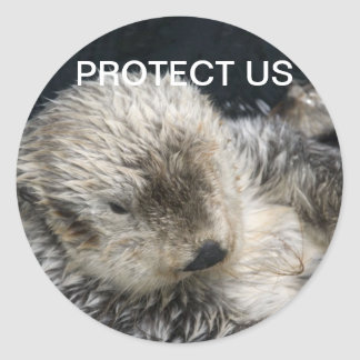 PROTECT US Stickers