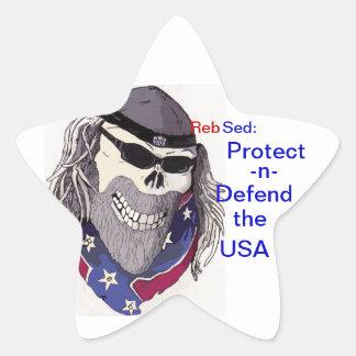 Protect USA Star Sticker