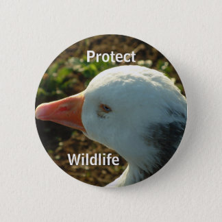 Protect Wildlife | 2 Inch Round Button